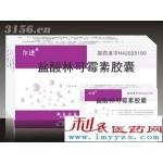盐酸林可霉素胶囊(抗生素消炎)